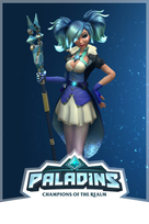 Paladins game box art